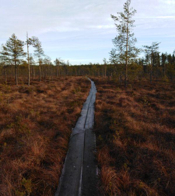 Hermannin polku (3 km)